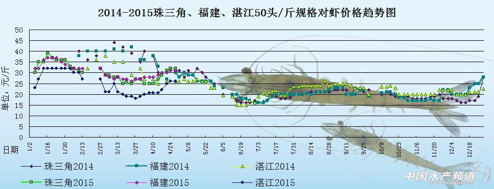 对虾塘边价:市场走量小 短期行情趋稳