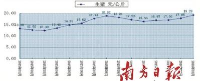 广东:今年生猪价格或全年在高位运行