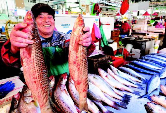 山东青岛各种海鲜开始集中上市 贝类海鲜唱主角